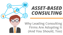 9Lenses, Asset-Based Consulting